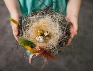 bird nesting co parenting